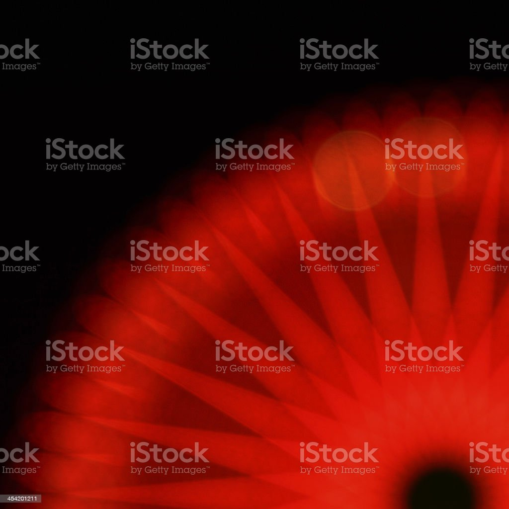 Midnight flower-Red royalty-free stock photo
