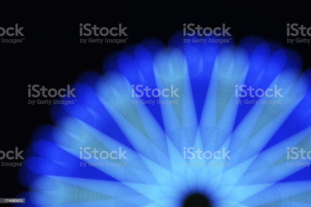 Midnight flower-Star royalty-free stock photo
