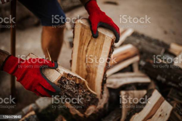 Photo of Midsection of firewood