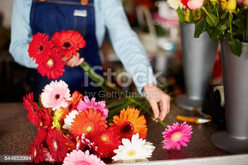 Midsection closeup of female florist arranging fresh Gerbera daisies. Woman is working at checkout counter in flower shop. Small business owner is wearing apron at garden center.