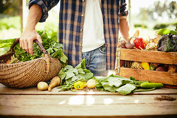 midsection of man standing with vegetables at table - organic farm stock photos and pictures