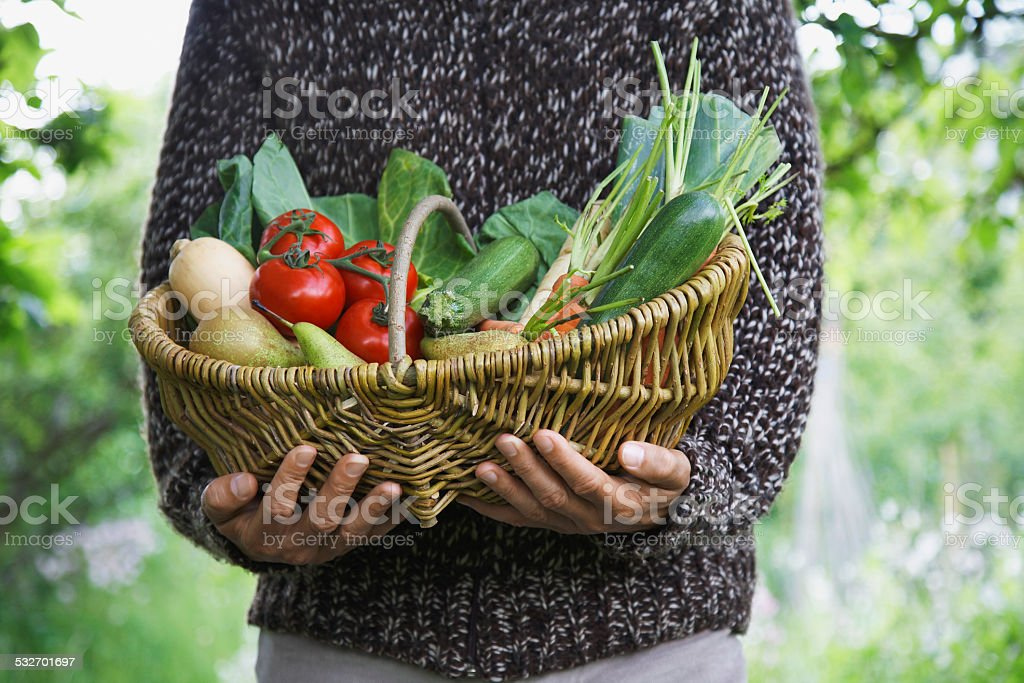 Midsection Of Man With Vegetable Basket stock photo