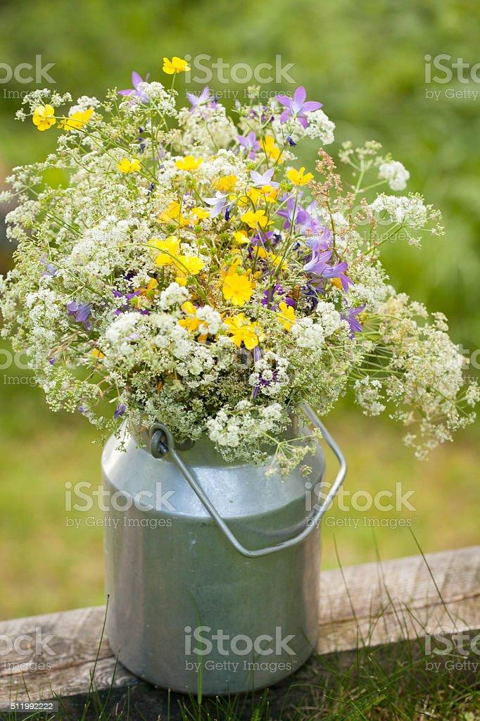 Midsummer Flowers Stock Photo Download Image Now Istock