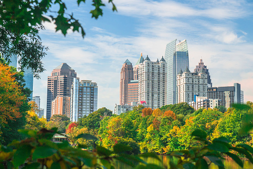 A view of the Midtown Atlanta skyline from Piedmont Park during the fall season.