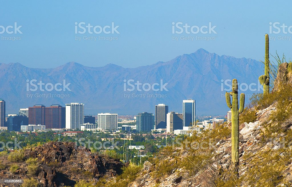 Midtown Phoenix skyline and Cactus stock photo
