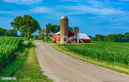 A country road fills the foreground leading back to a farm with red barn and spring corn crop with clouds above, Midwest USA