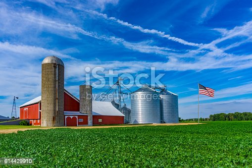 Spring crop fills the foreground leading back to a red barn and rolling hill background with clouds above, Midwest USA,Indiana