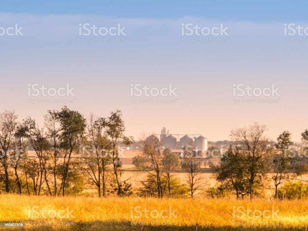 Midwest Fields in the Summer - Royalty-free Agricultural Field Stock Photo