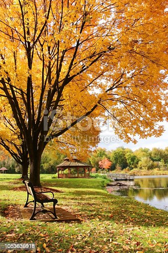 Beautiful autumn landscape with colorful trees around the pond and wooden gazebo in a city park. Lakeview park, Middleton, Madison area, WI, USA.