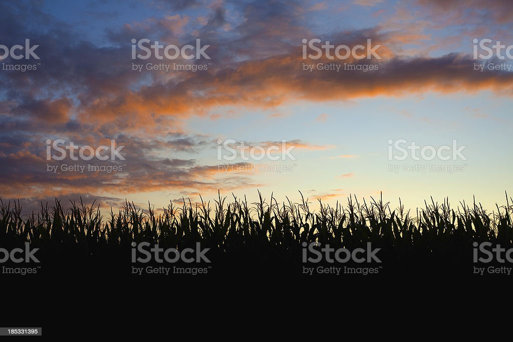 Midwest Sunset stock photo