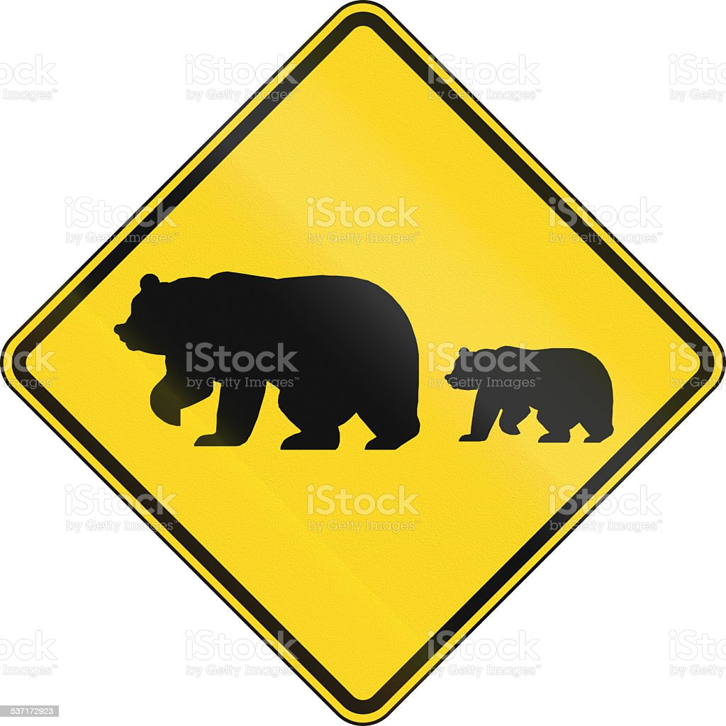 Migrating Bears stock photo