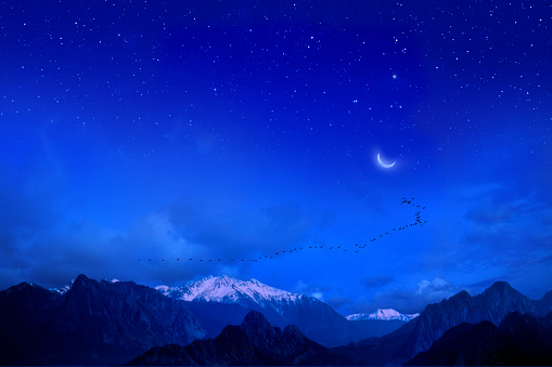 migrating flock of birds over high snowcapped mountains over night sky with stars and moon