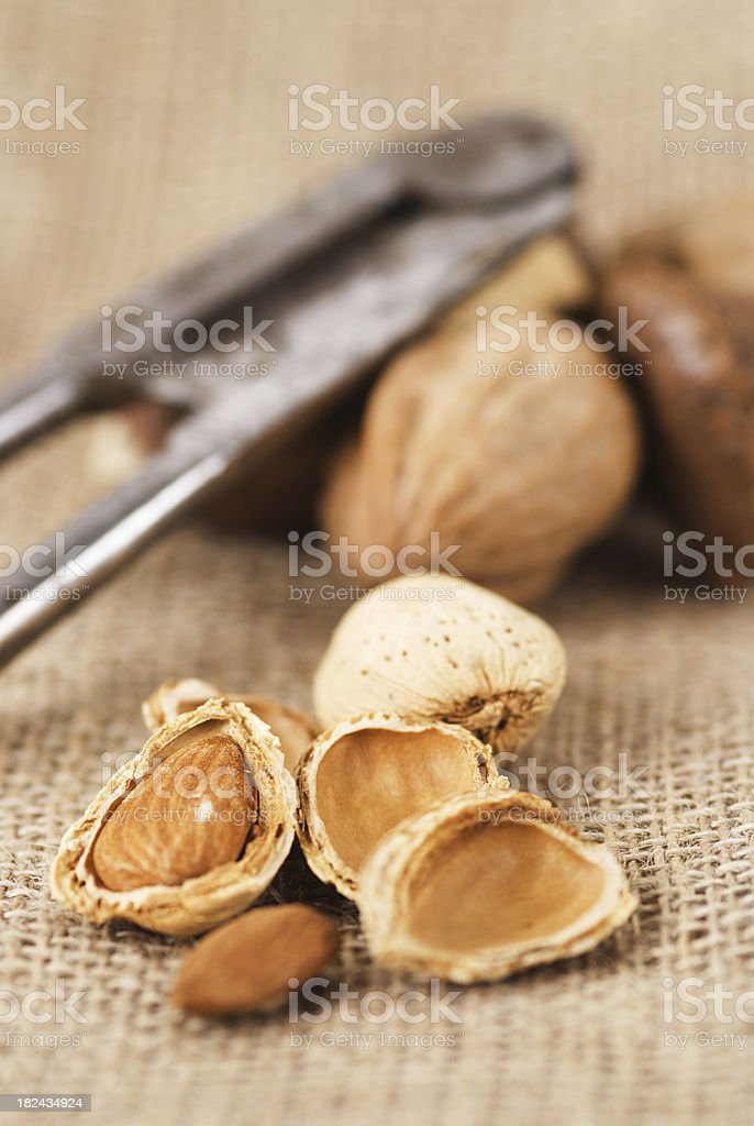 Miked nuts royalty-free stock photo