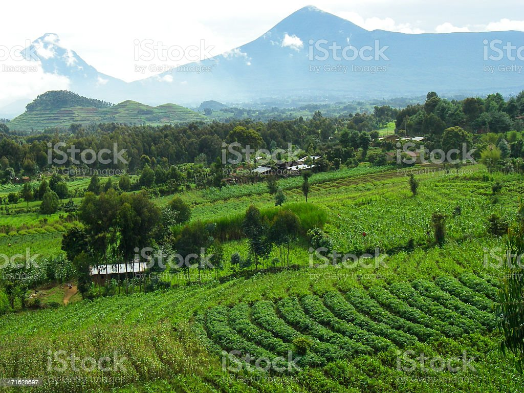 Mikeno Karisimbi Peaks and Farmland Virunga Mountains Rwanda Central Africa royalty-free stock photo