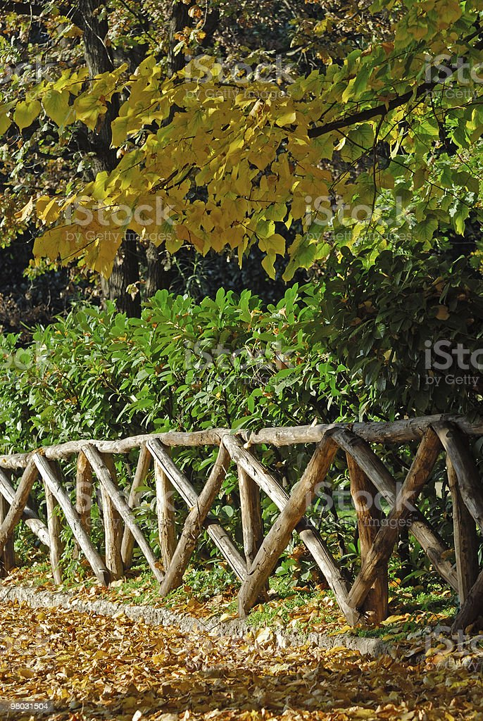 Milan (Italy) - Autumn in the park royalty-free stock photo