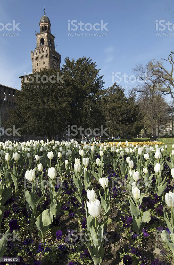 Milan (Italy) - Castello Sforzesco royalty-free stock photo