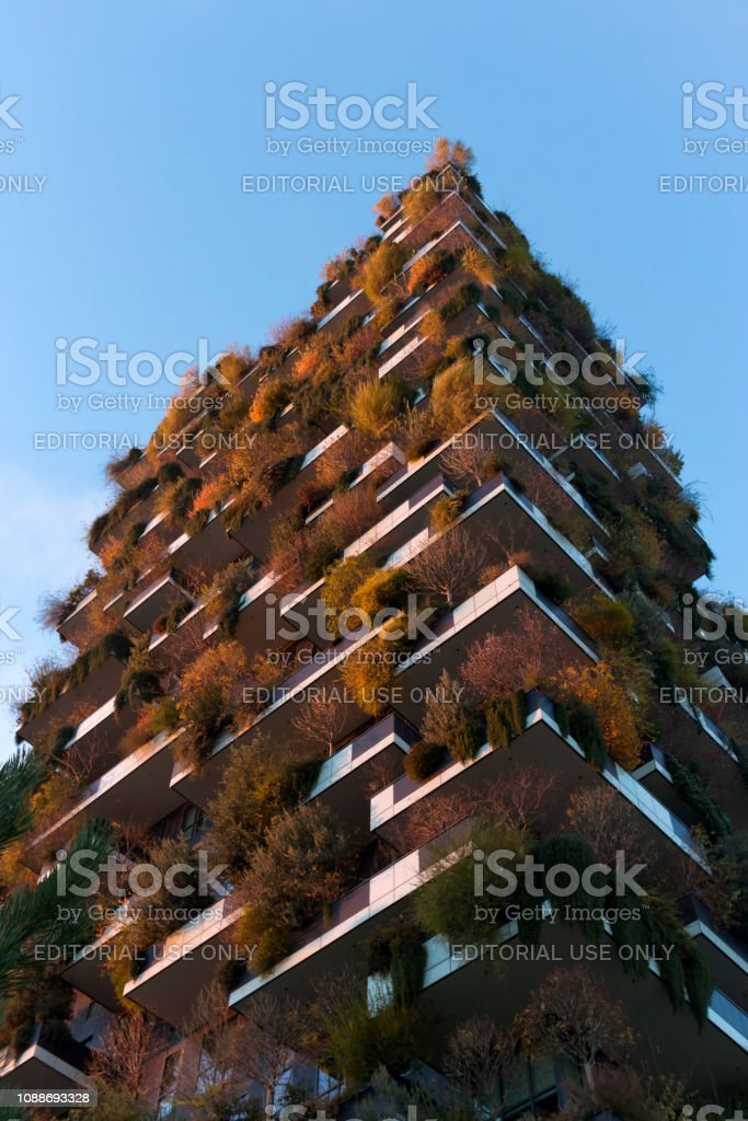 Milan - Sunset on the tower Bosco Verticale, the leaves change color in autumn, Porta Nuova district , Italy - foto stock