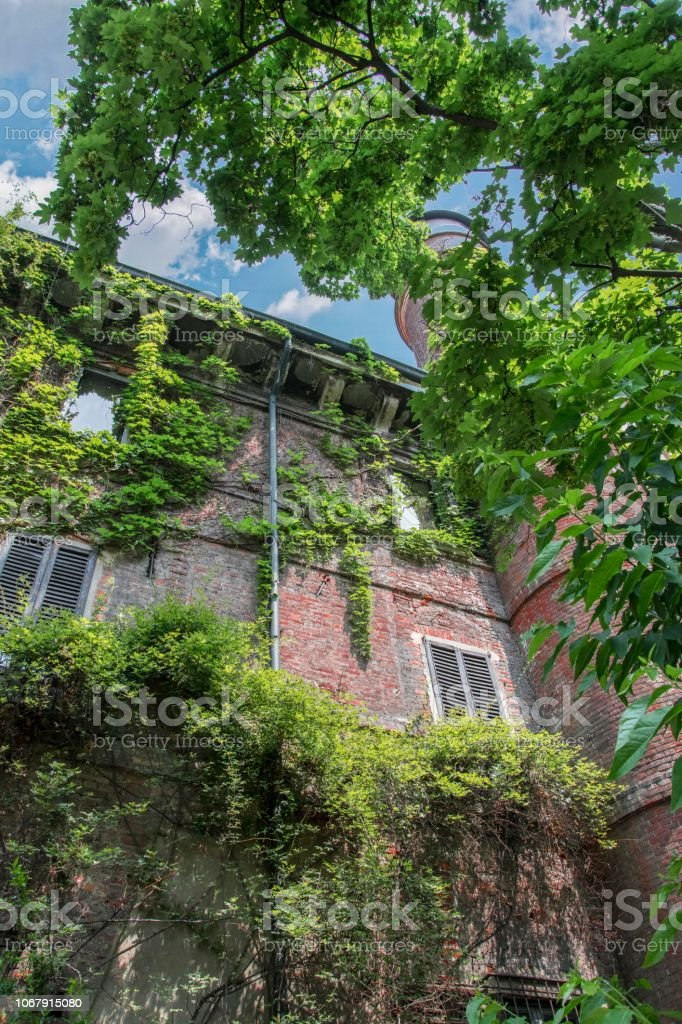 Milano, Orto Botanico Brera - foto stock