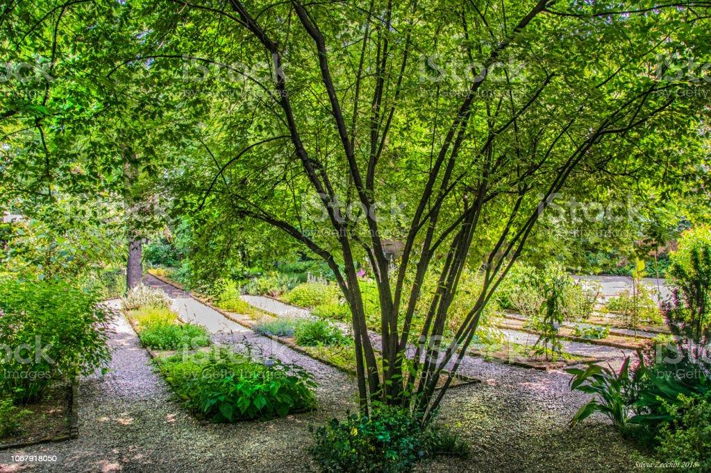 Milano, Orto Botanico di Brera - foto stock