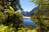 Landscape of a river crossing a glacial valley of the Fiordland National Park, next to the Milford Track, known as the finest walk in the World