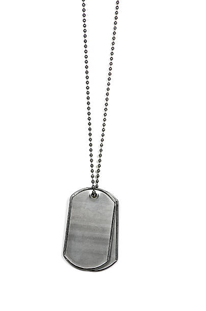 military dog tags on white - chain object stock photos and pictures