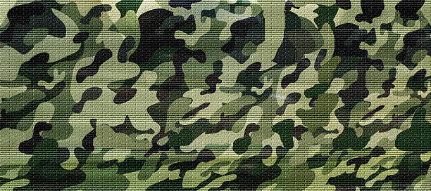 military forest camuoflage background - 위장 뉴스 사진 이미지