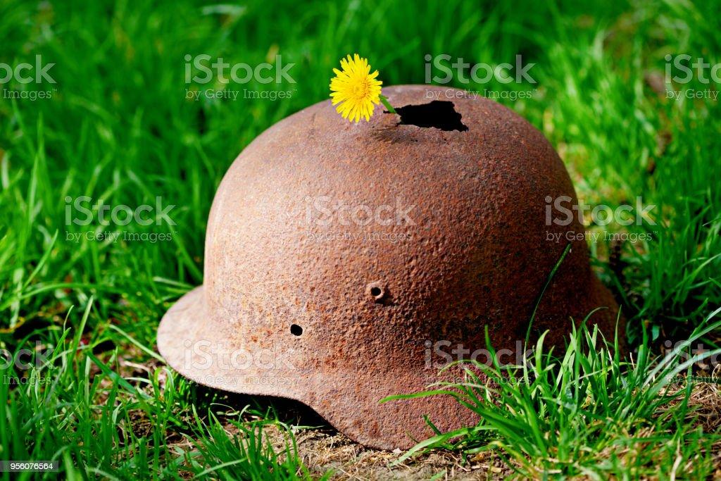 Casco militar de la segunda guerra mundial con una flor de una manzanilla - foto de stock