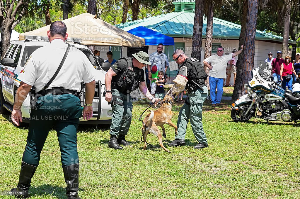Military K9 Demonstration royalty-free stock photo