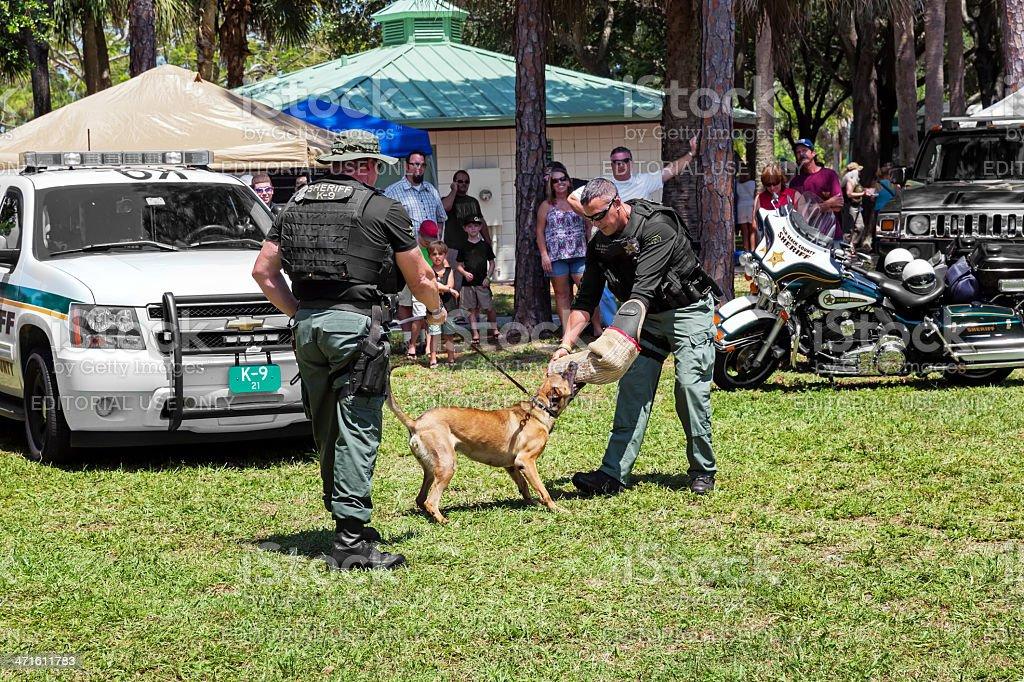 Military K9 Working Dog Demonstration royalty-free stock photo