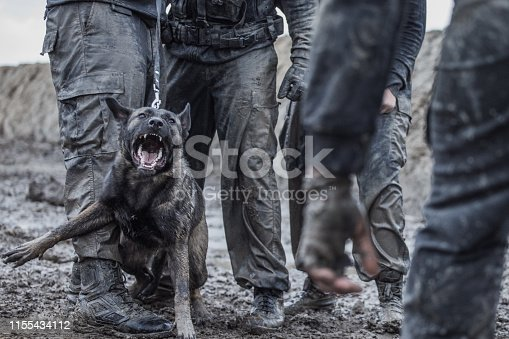 Military Mud Run mixed race group with a security trained dog