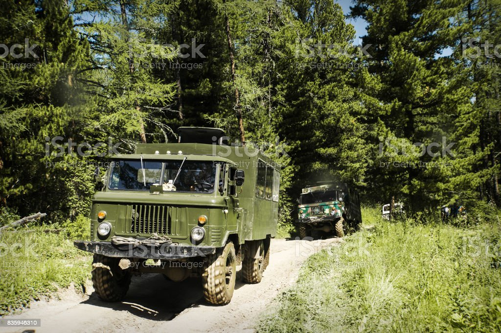 Military vehicle in the forest, stock photo