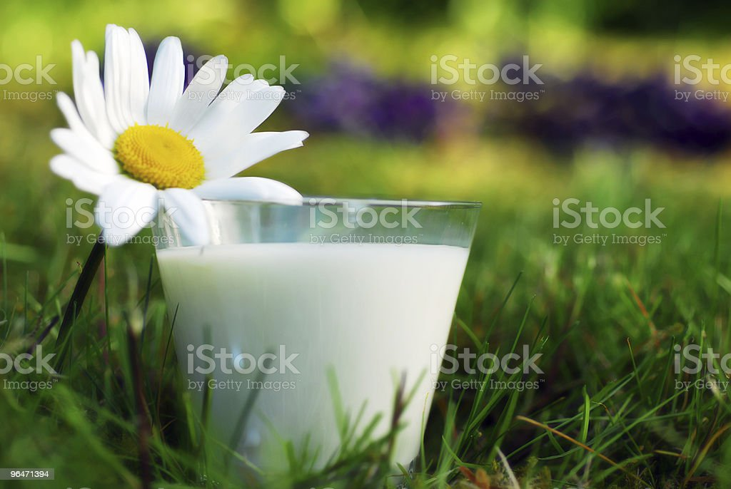 Milk 2 royalty-free stock photo