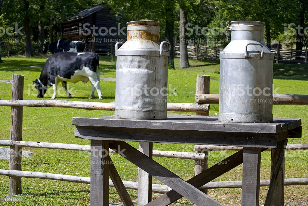 Milk bottles royalty-free stock photo