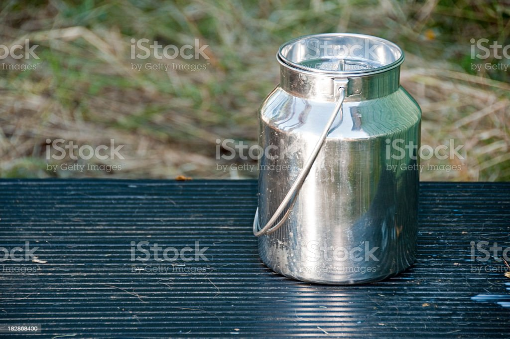 Modern stainless steel milk can sized for goats.