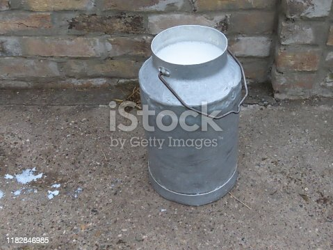 View of Bucket of Fresh Taken Milk Outdoors in the Country House.