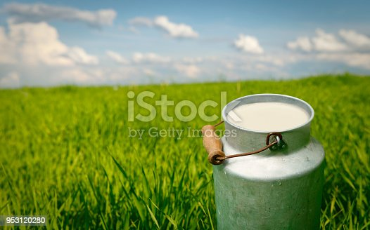 Canister with fresh milk on the green meadow