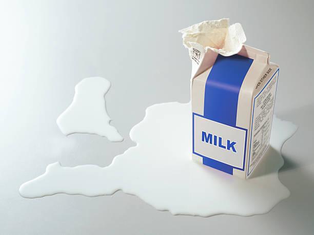 Pack de lait - Photo