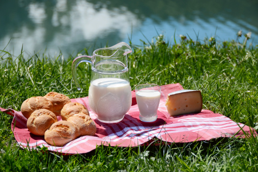 Milk, cheese and bread served at a picnic