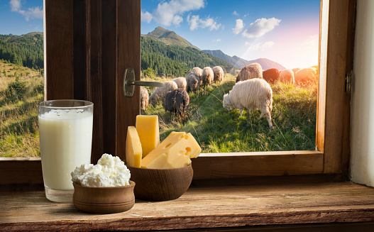 Milk, cheese at a picnic on Alpine meadow, Switzerland
