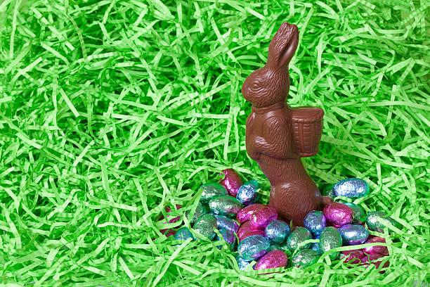 Milk Chocolate Bunny & Eggs stock photo