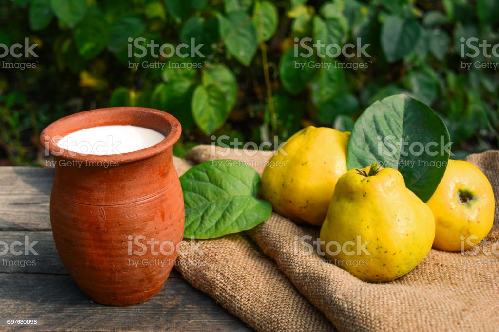 Milk in a clay pot and quince stock photo