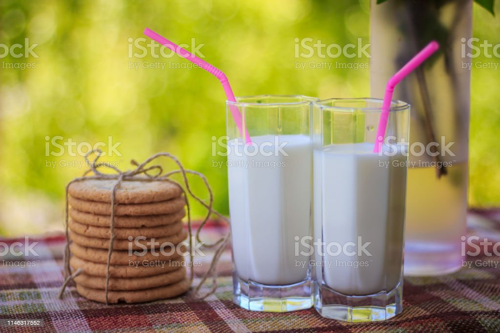 Milk in glasses and branches of lilac in a vase. Milk in a glass,...