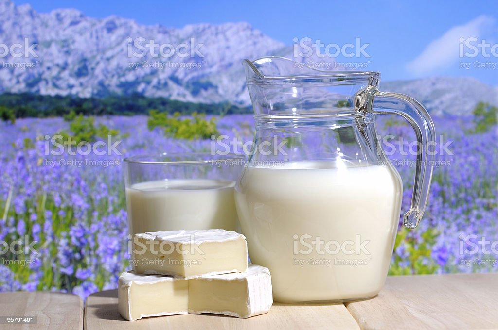 Milk jug with goat cheese in a mountains background royalty-free stock photo
