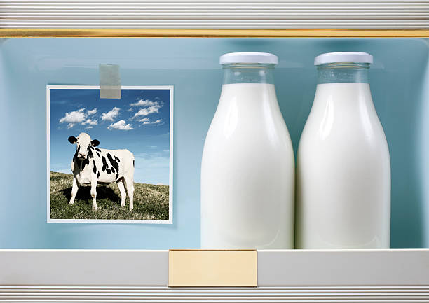 milk - milk bottle stock photos and pictures