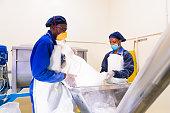 istock Milk Powder Factory Workers at Job 1151339072