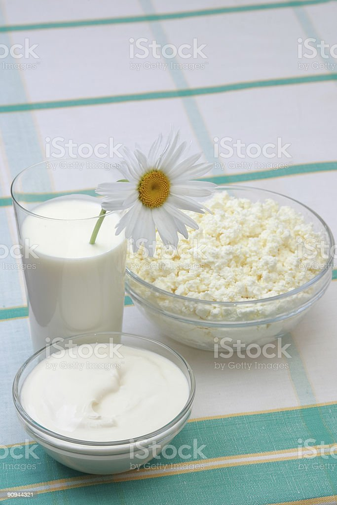 Milk, sour cream and cottage cheese royalty-free stock photo