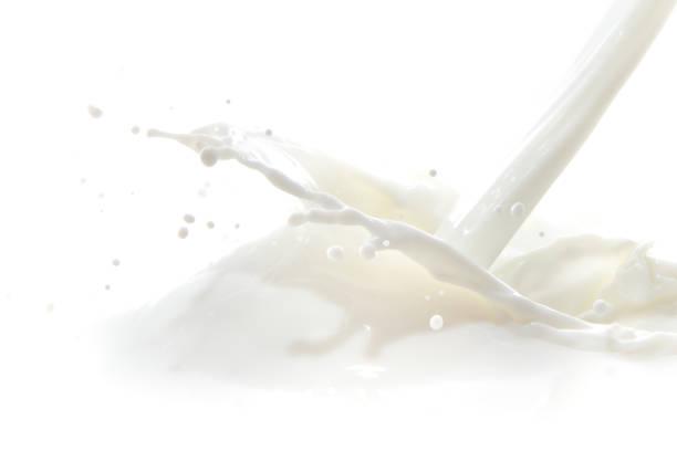 milk splash – Foto