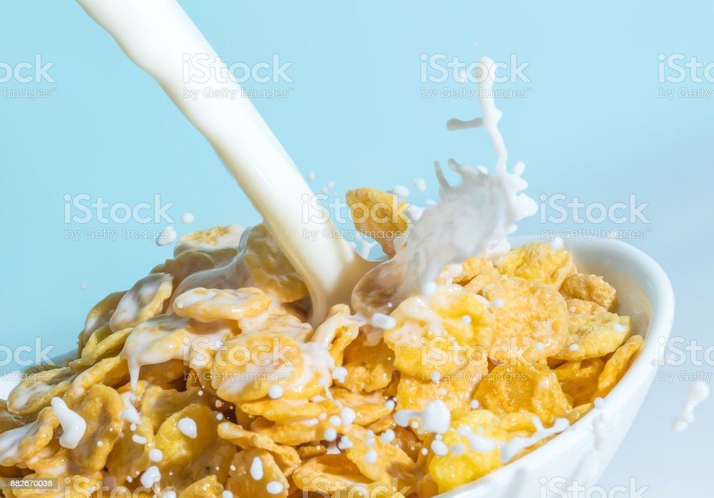 Milk stream pouring into a bowl with сornflakes close-up. Milk splash on a cup with flakes macro on a blue background. stock photo
