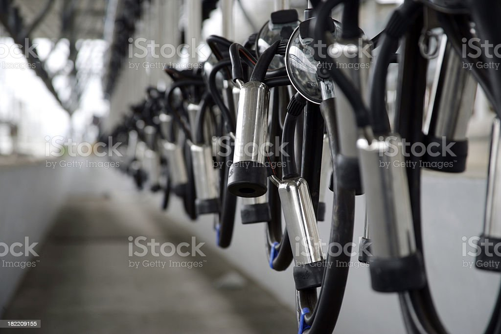 Milking Units Perspective stock photo