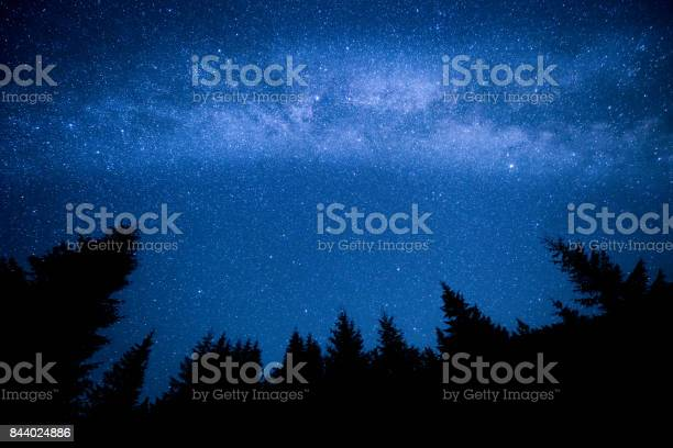 Photo of Milky Way above the night mountain forest